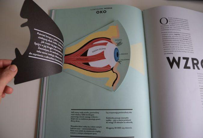 Anatomia. Obraz ludzkiego ciała na wyjątkowych ażurowych rycinach Druvert Helene